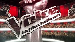 Mon avis sur The Voice: La plus belle voix