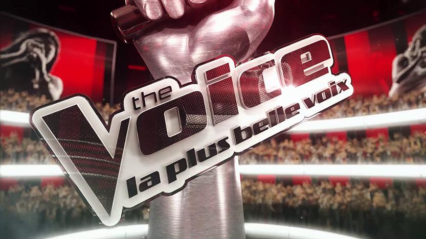 Test The Voice. Devenez la plus belle voix sur PS4 et Nintendo Switch